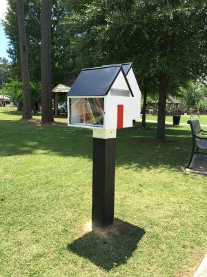 Little Free Library 2 of Twin Companies