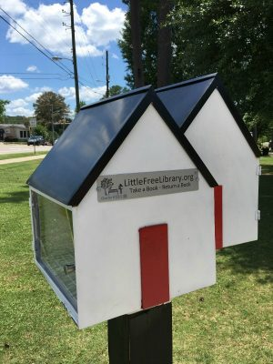 Little Free Library of Twin Companies